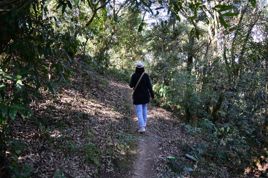 Rinchenpong Path