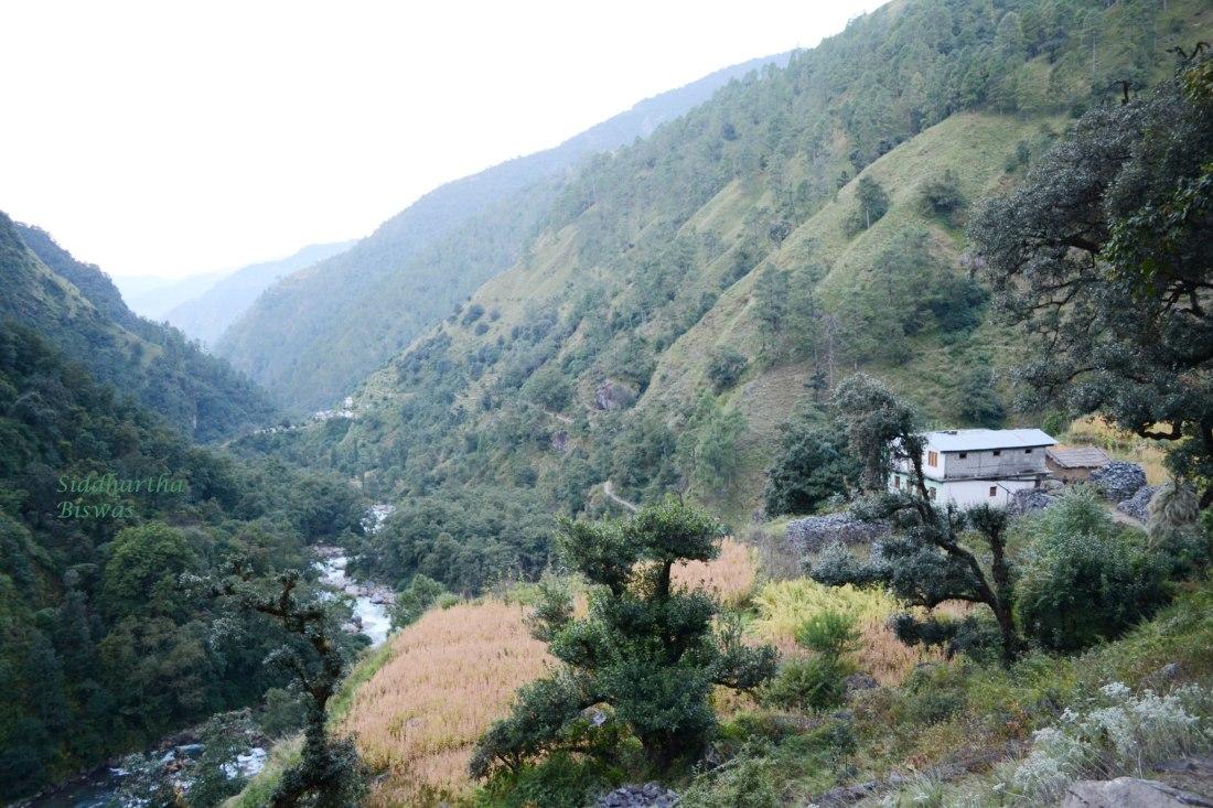 Vishwa Lodge