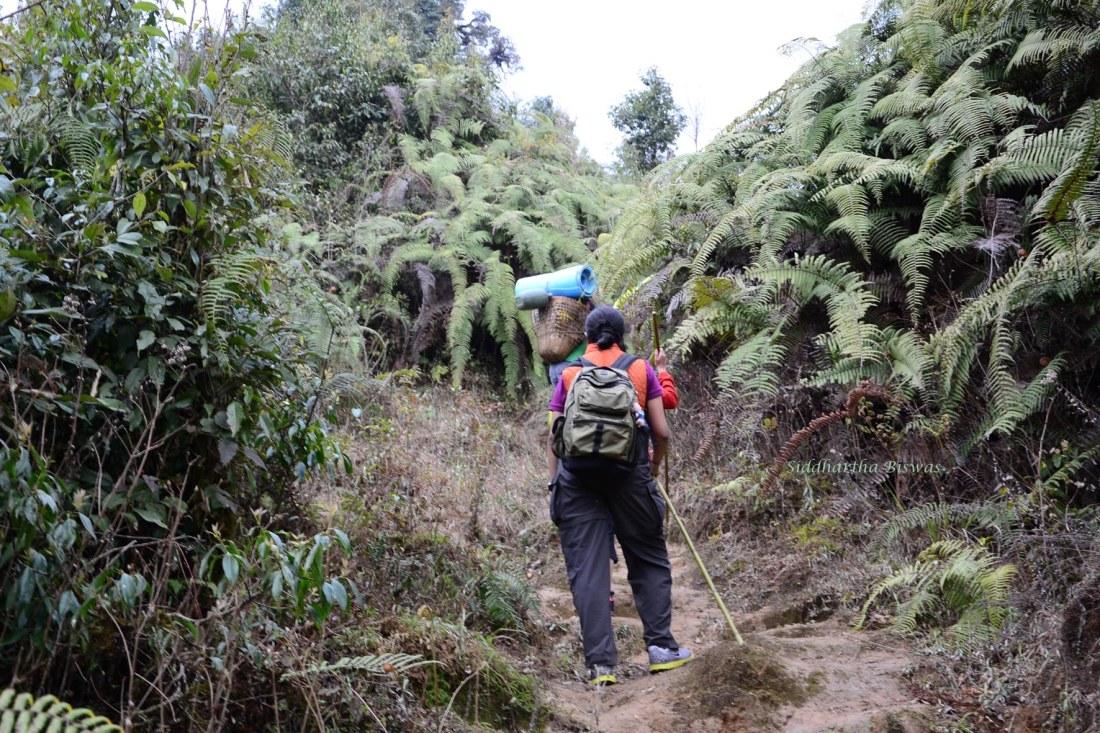 b_Rinjay trek1
