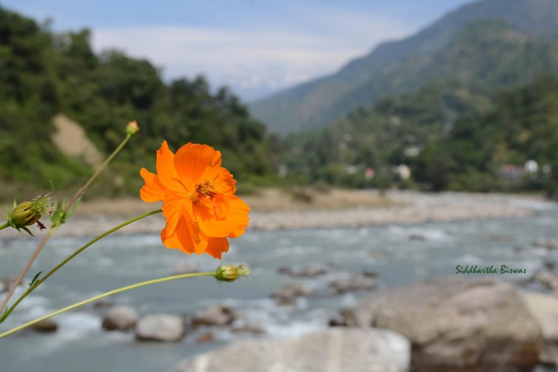B_Chandrapuri1