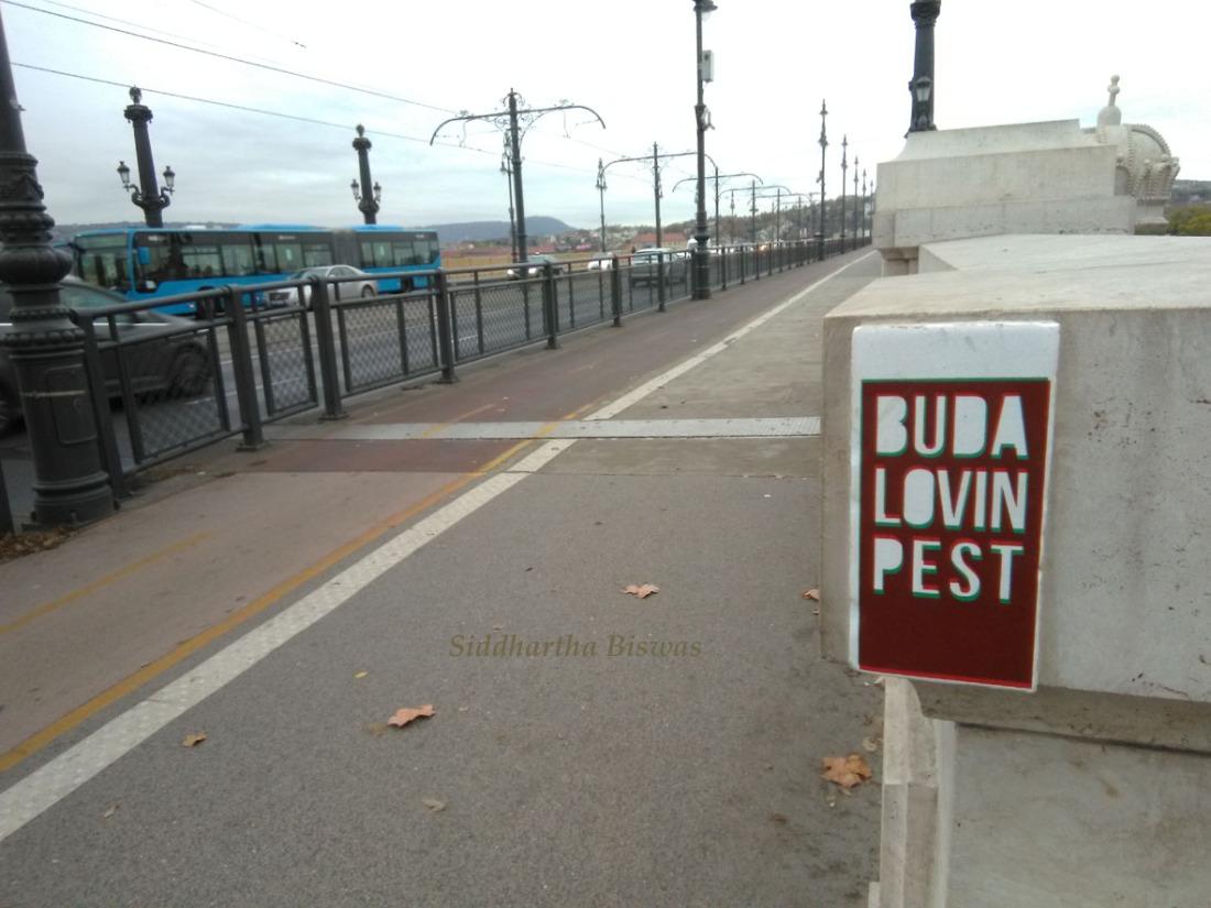 Buda_loving
